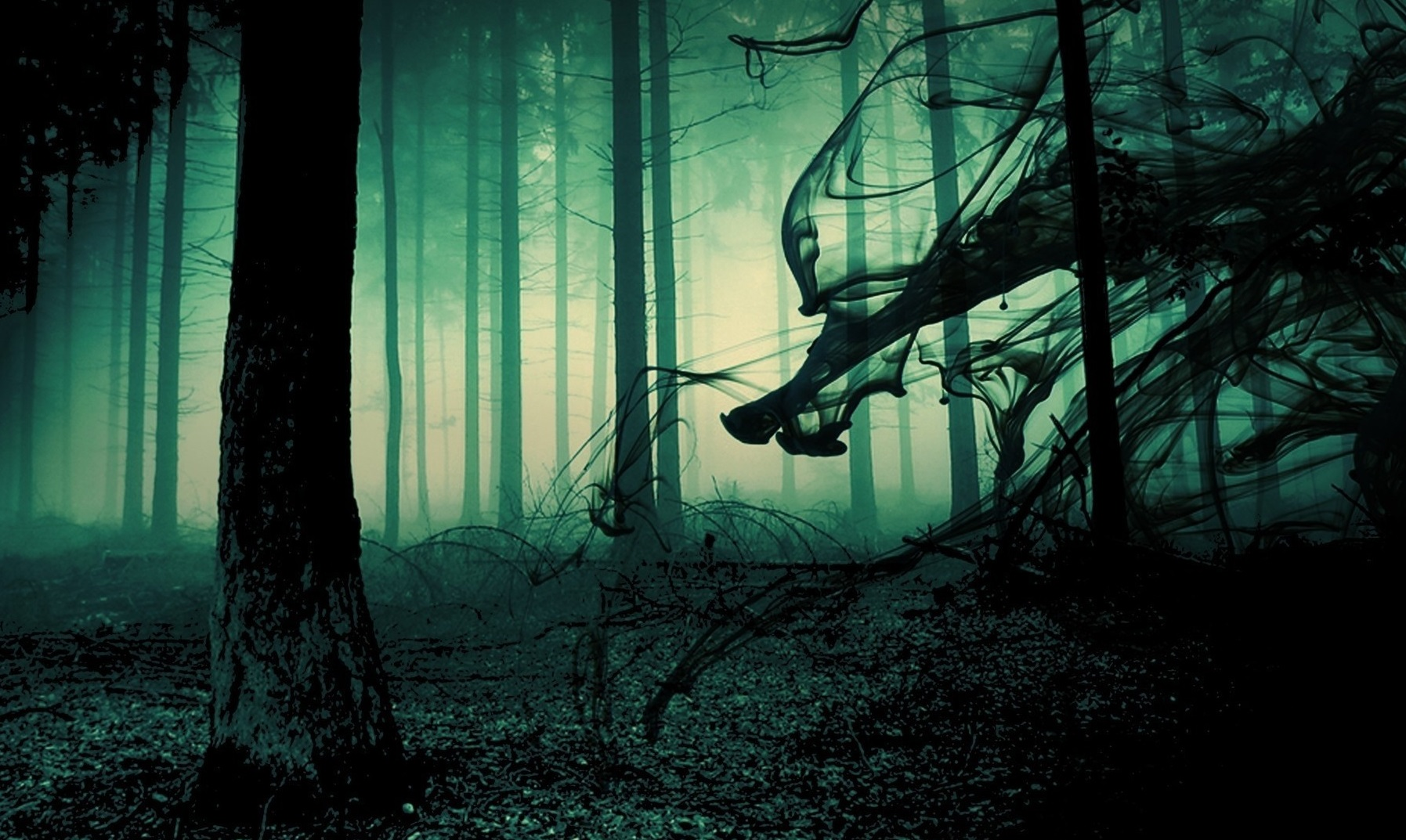 13 scary stories to keep you spooked this halloween